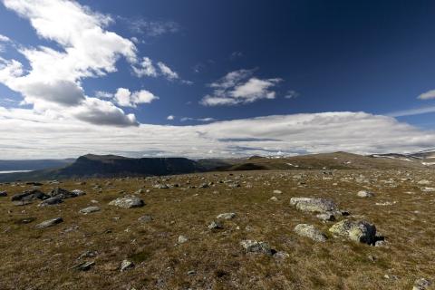 Tjahkelij und Skierffe von der Ferne,©Markus Proske—Canon EOS 5D Mark II, EF16-35mm f/4L IS USM, 16mm, 1/200s, Blende 11, ISO 200