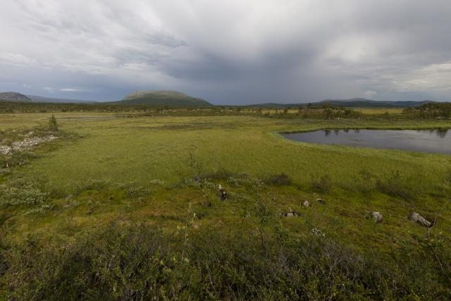 Seen und Sümpfe der Boarek-Hochebene,©Markus Proske—Canon EOS 5D Mark II, EF16-35mm f/4L IS USM, 16mm, 1/160s, Blende 11, ISO 200