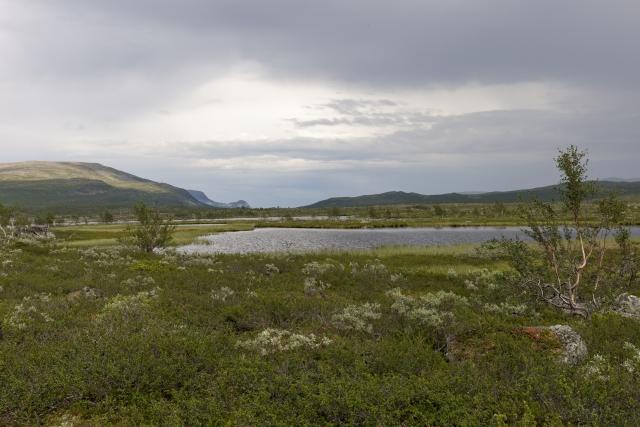Seen und Sümpfe der Boarek-Hochebene, im Hintergrund der Paß, an dem wir den Kungsleden verlassen haben,©Markus Proske—Canon EOS 5D Mark II, EF16-35mm f/4L IS USM, 35mm, 1/80s, Blende 11, ISO 200