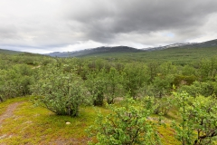 Kungsleden nach der Querung des Ballinjohka,©Markus Proske—Canon EOS 5D Mark II, EF16-35mm f/4L IS USM, 16mm, 1/320s, Blende 9, ISO 200