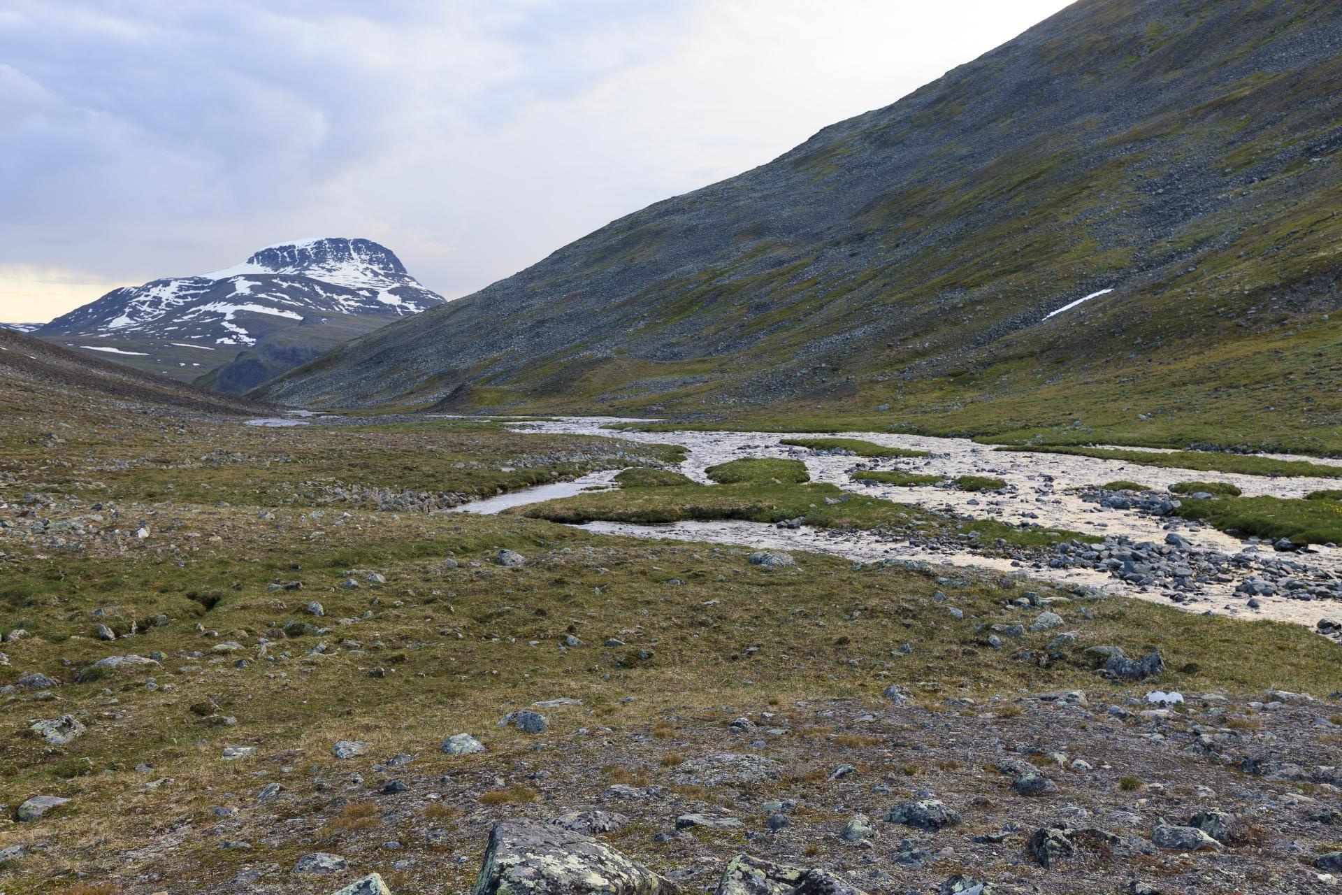 Ein paar gemütliche Meter entlang des Sinnijohka zwischen den Schuttkegeln, im Hintergrund der Stuor Ruška (1700m)