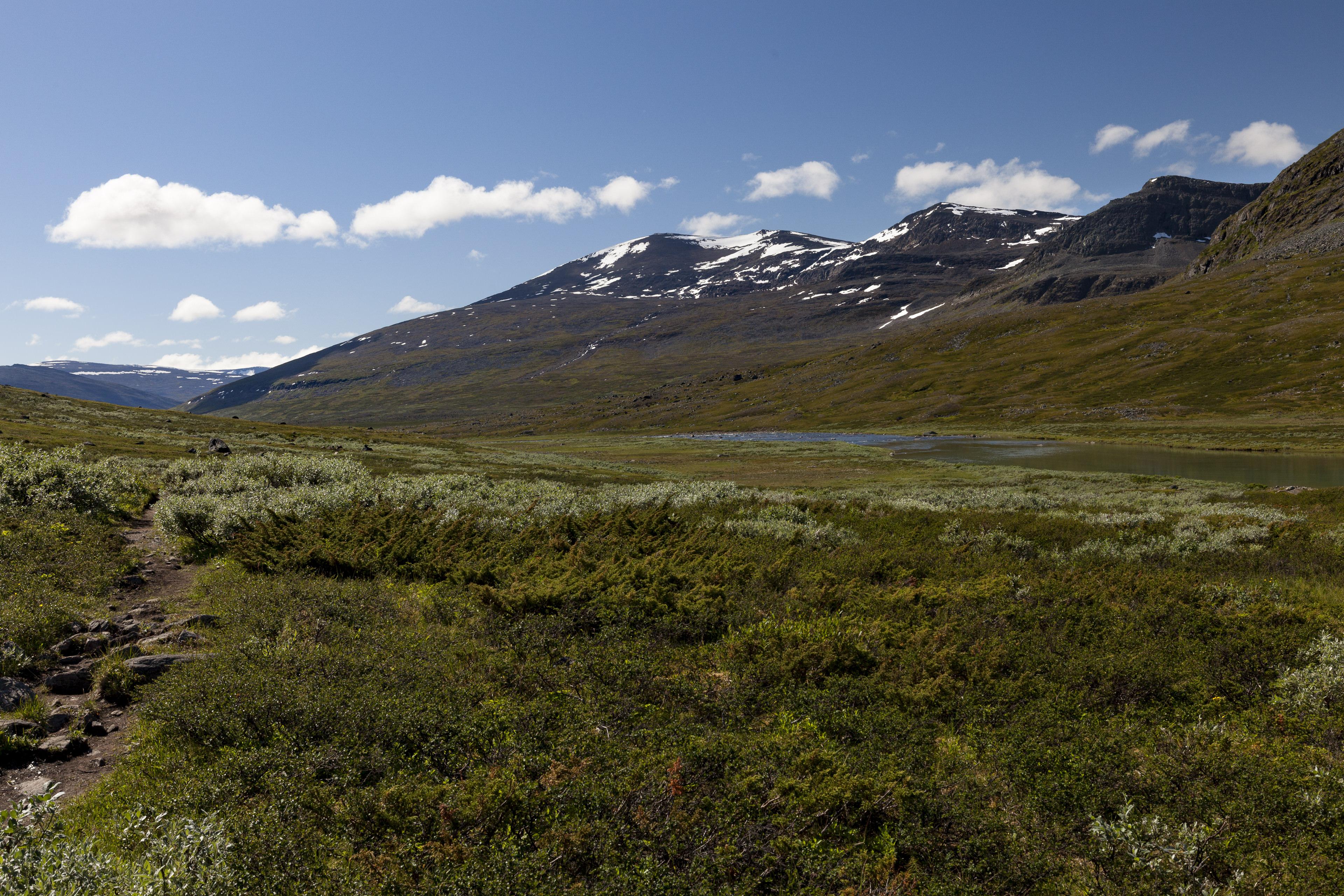 Die Richtung stimmt, Kaitumjaure liegt am Fuß des Sánarčohkka (1580m),©Markus Proske—Canon EOS 5D Mark II, EF16-35mm f/4L IS USM, 35mm, 1/160s, Blende 11, ISO 200