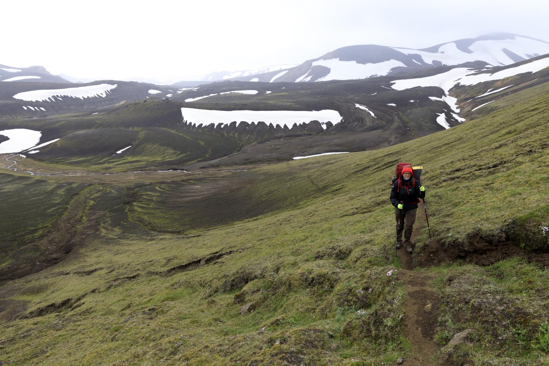 Elisabeth im Anstieg auf den nördlichen Ausläufer des Mógilshöfðar
