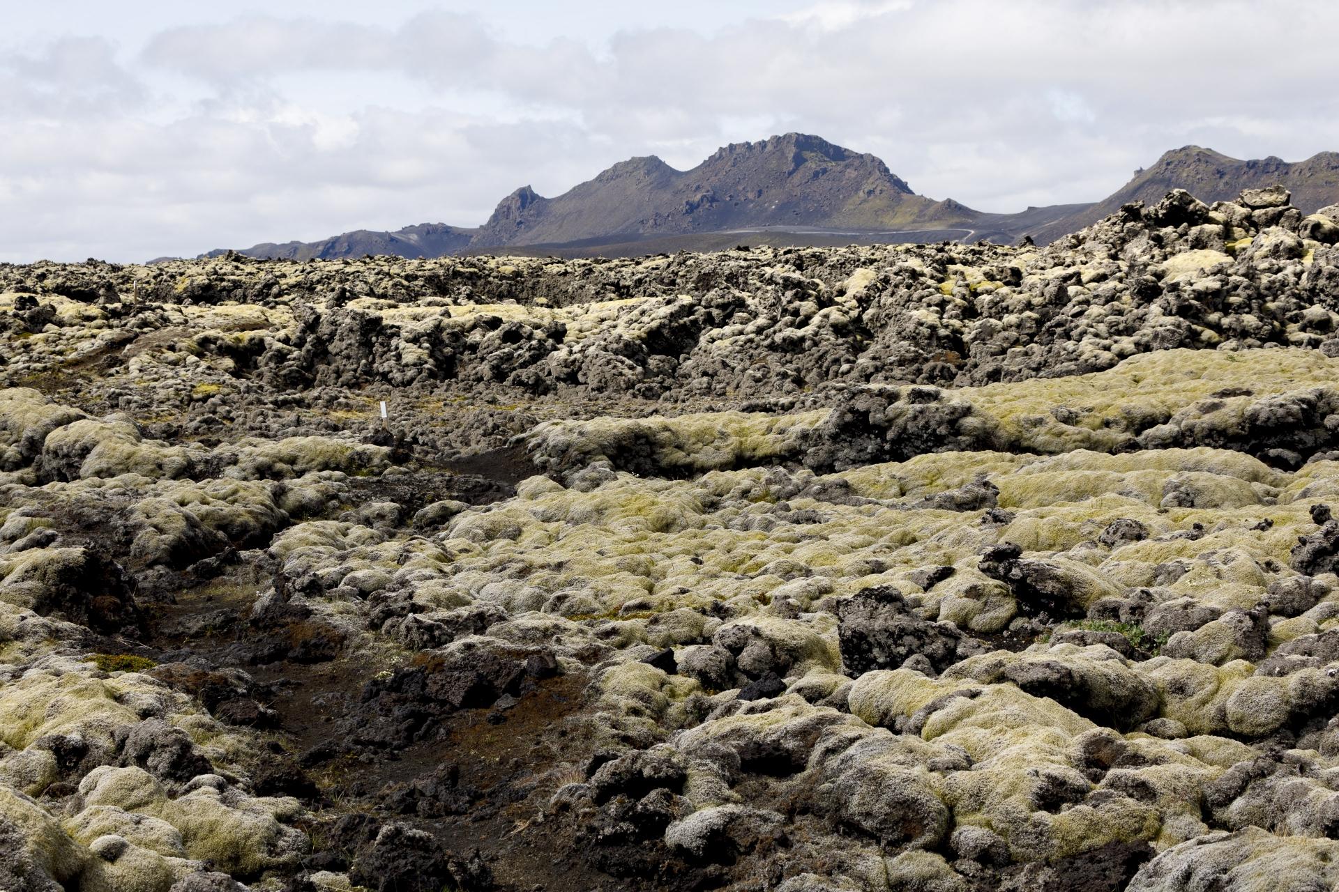 Weg durch das Lavafeld Lambafitjarhraun