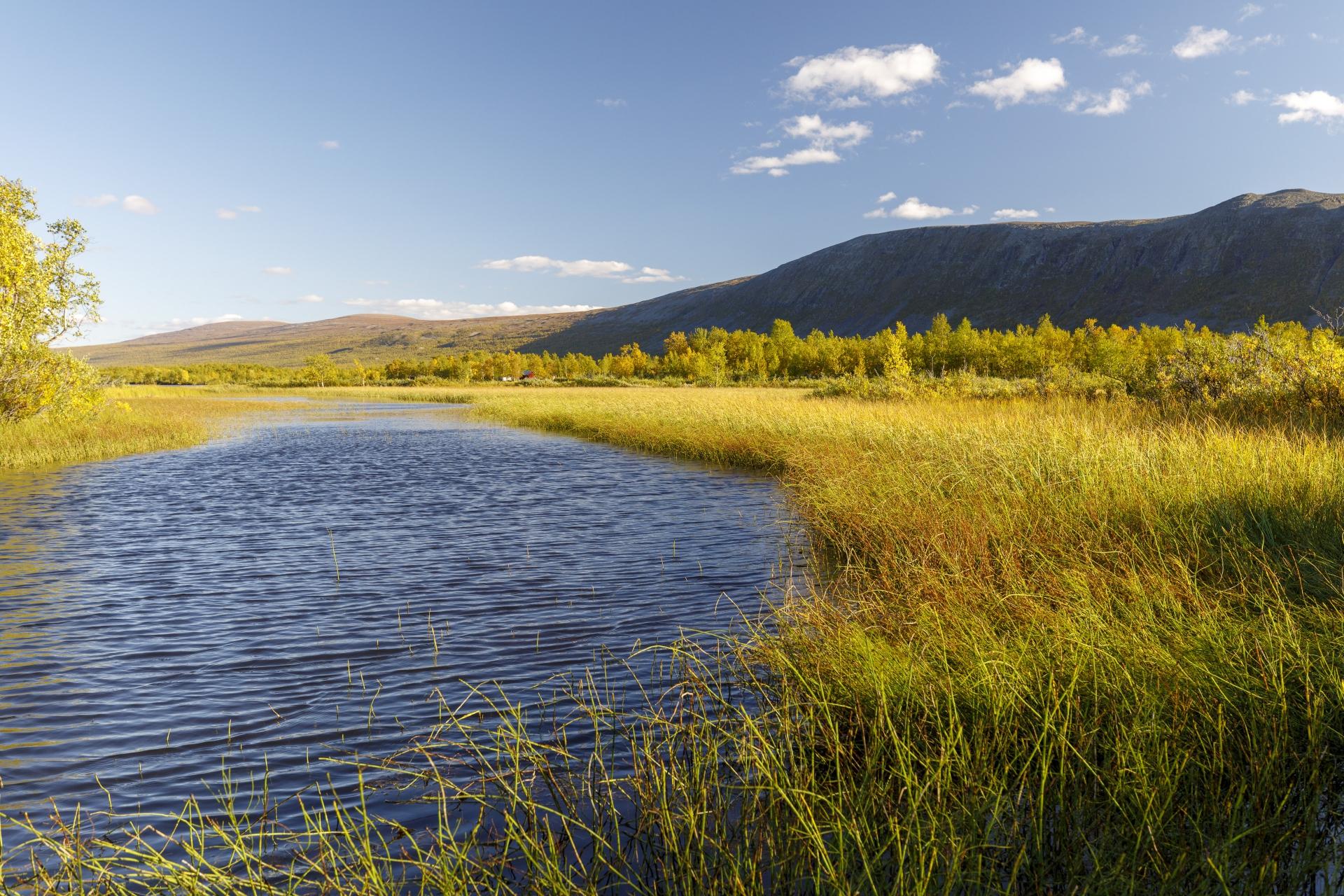 Paittasjärvi