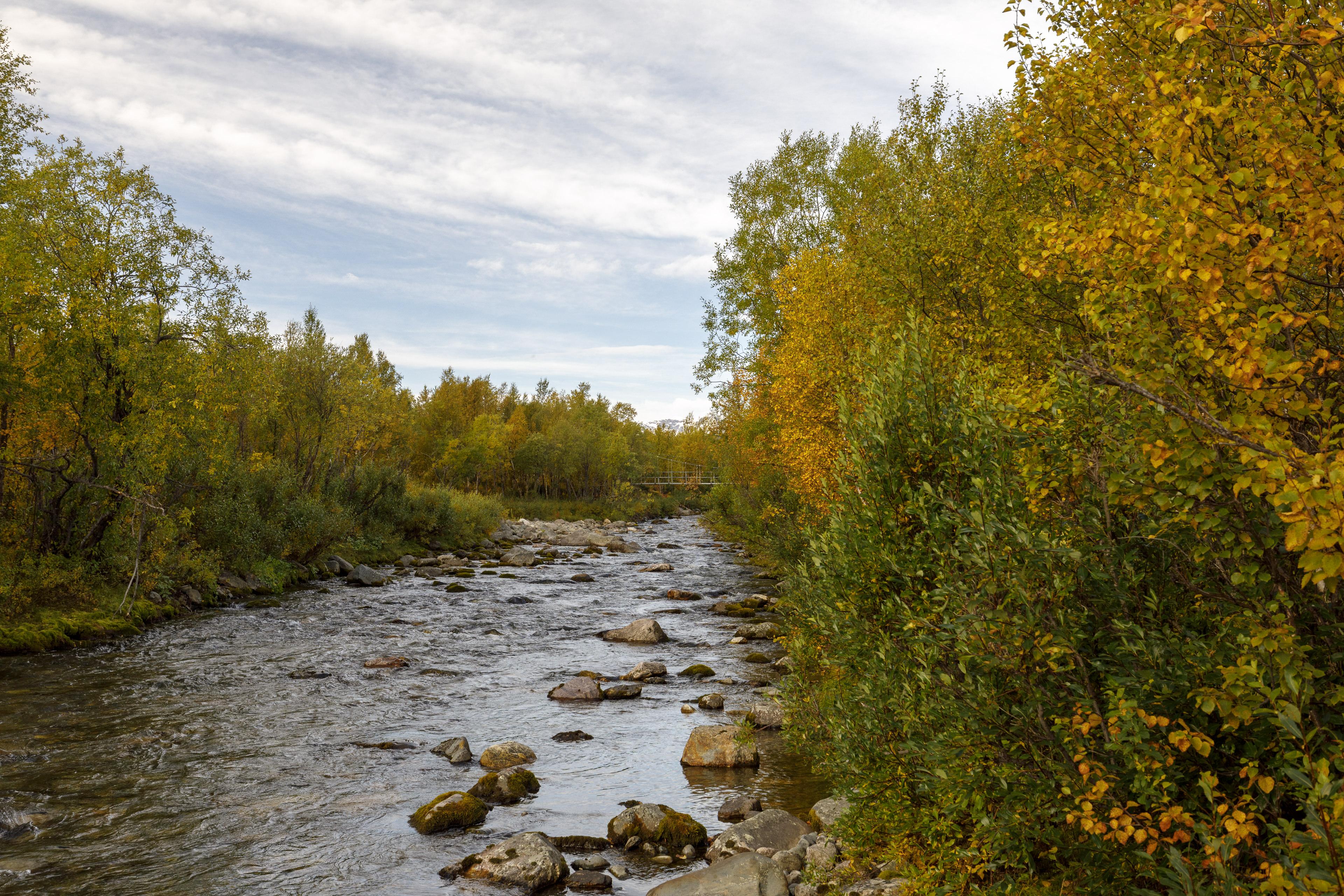 Die erste Brücke – in Island wäre da nur eine Furt gewesen,©Markus Proske—Canon EOS 5D Mark IV, EF16-35mm f/4L IS USM, 35mm, 1/125s, Blende 8, ISO 400