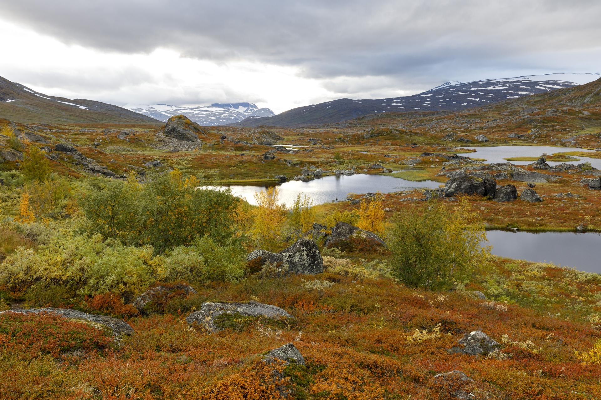 Blick von Unna Allakas in Richtung Norwegen