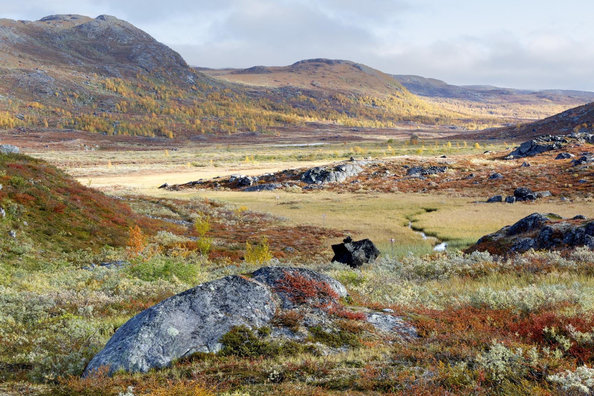 Gámavuopmi (Blick Richtung Norden)