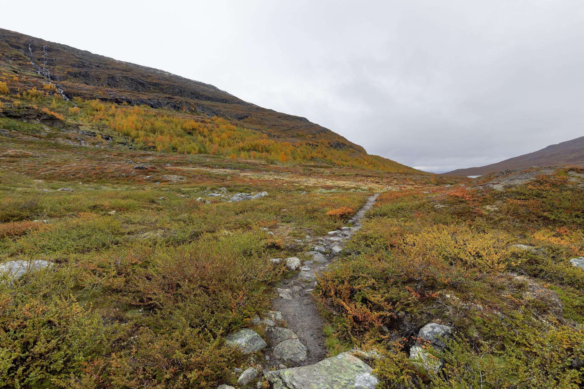 Weg durch das Kårsavagge