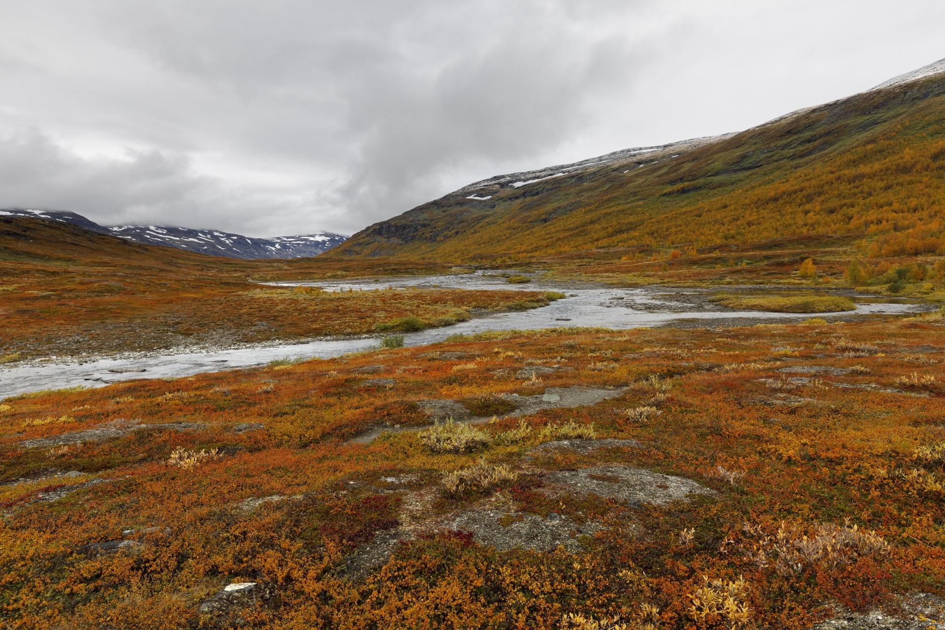 Blick zurück ins Kårsavagge