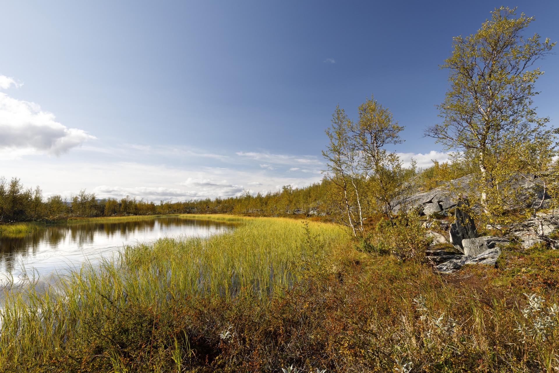 Unser Weg schlängelt sich um viele kleine Seen und Sumpfflächen