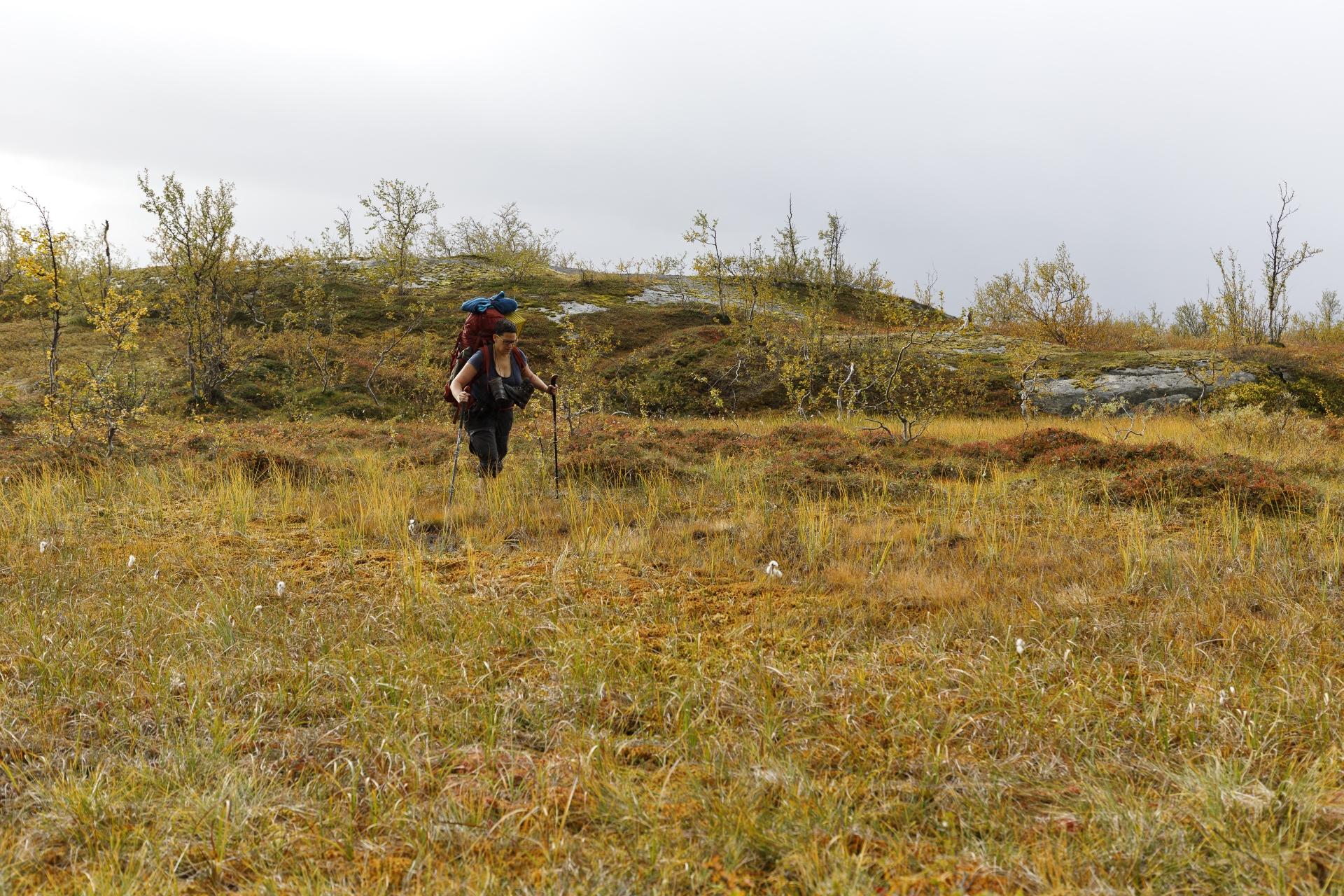 Querung einer Sumpflandschaft – Teil I
