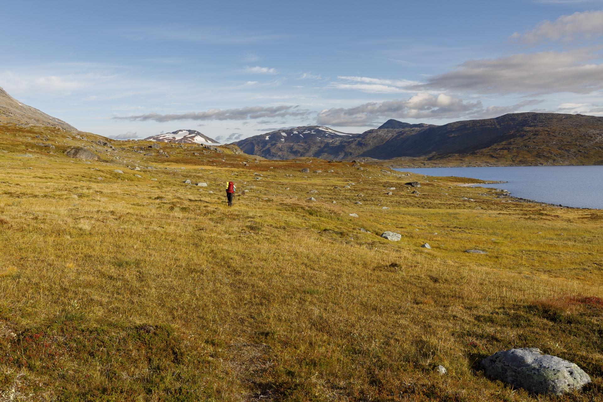 Elisabeth auf dem Weg nach Pauro, entlang des Kåbtåjaure