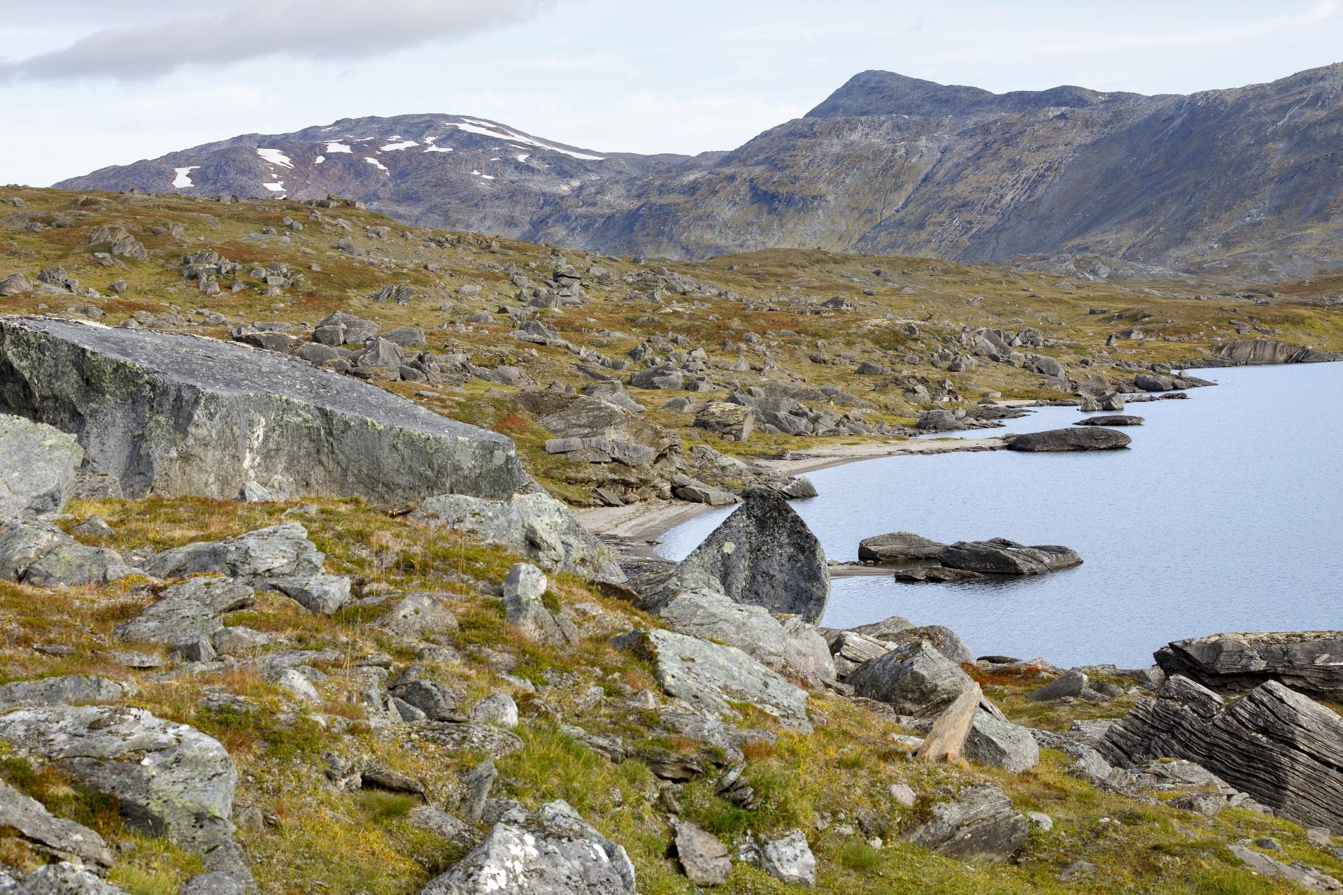 Westufer des Kåbtåjaure und  Paurofjellet