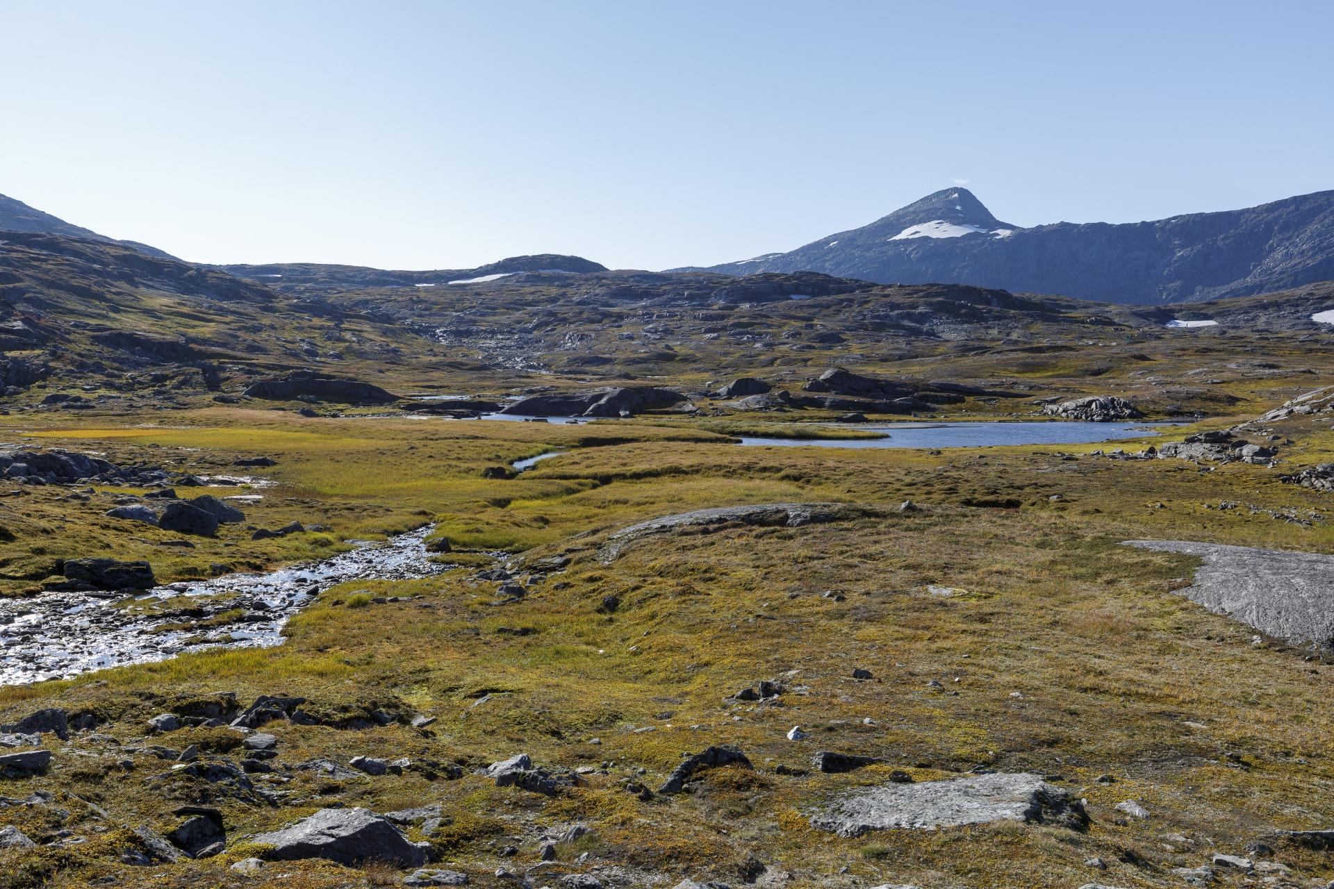 Eine letzter Blick zurück auf das Paurofjellet