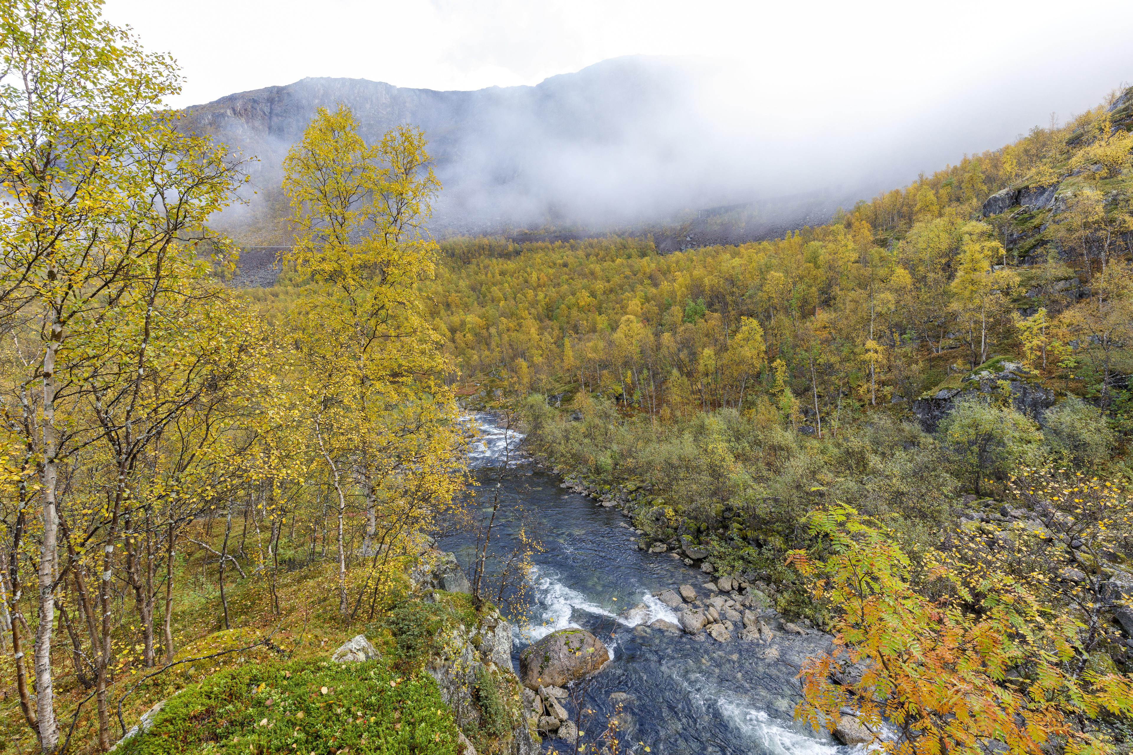 Rombakselva / Norddalen,©Markus Proske—Canon EOS 5D Mark IV, EF16-35mm f/4L IS USM, 16mm, 1/60s, Blende 11, ISO 640