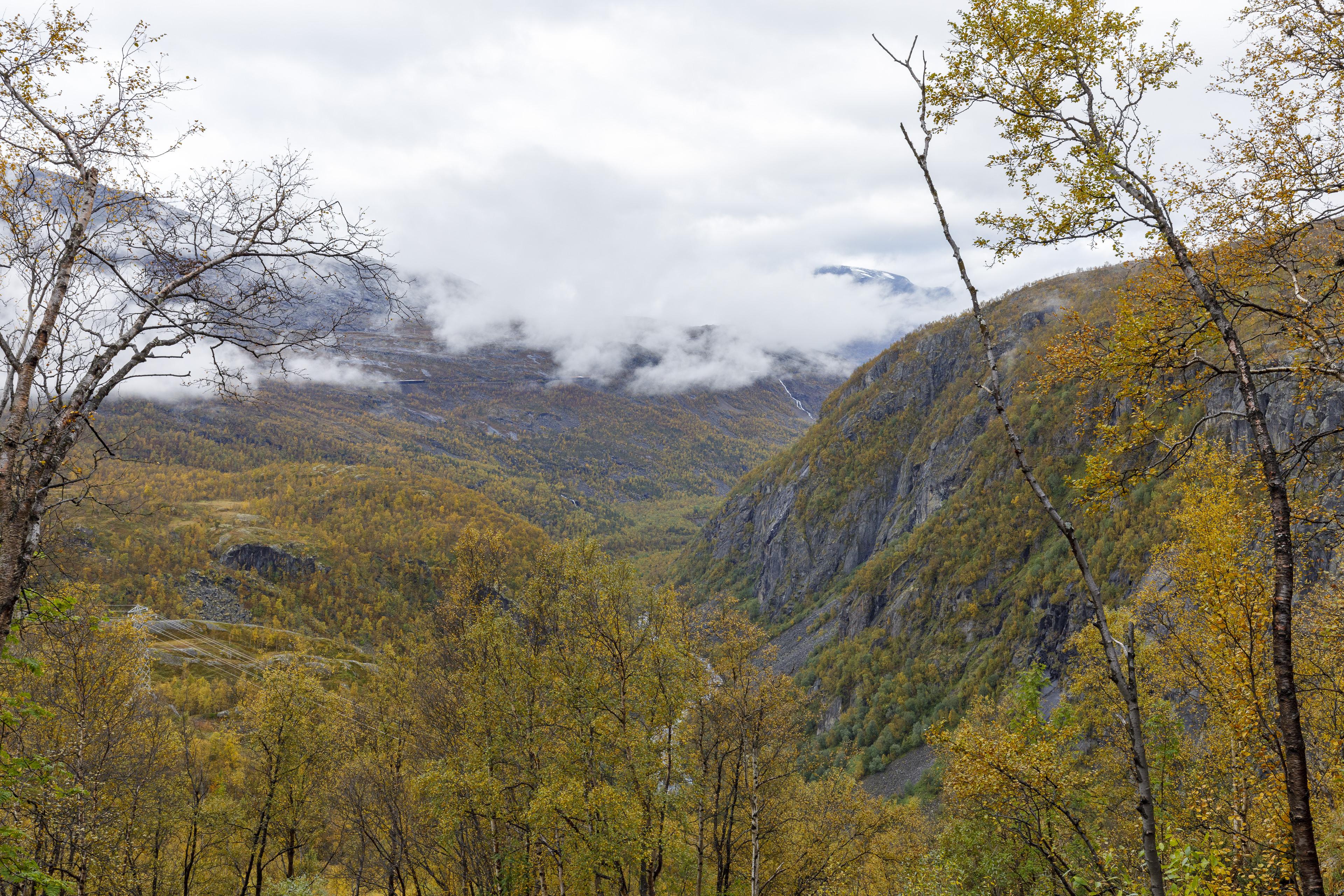 Norddalen und Ofotbanen,©Markus Proske—Canon EOS 5D Mark IV, EF16-35mm f/4L IS USM, 35mm, 1/80s, Blende 11, ISO 400