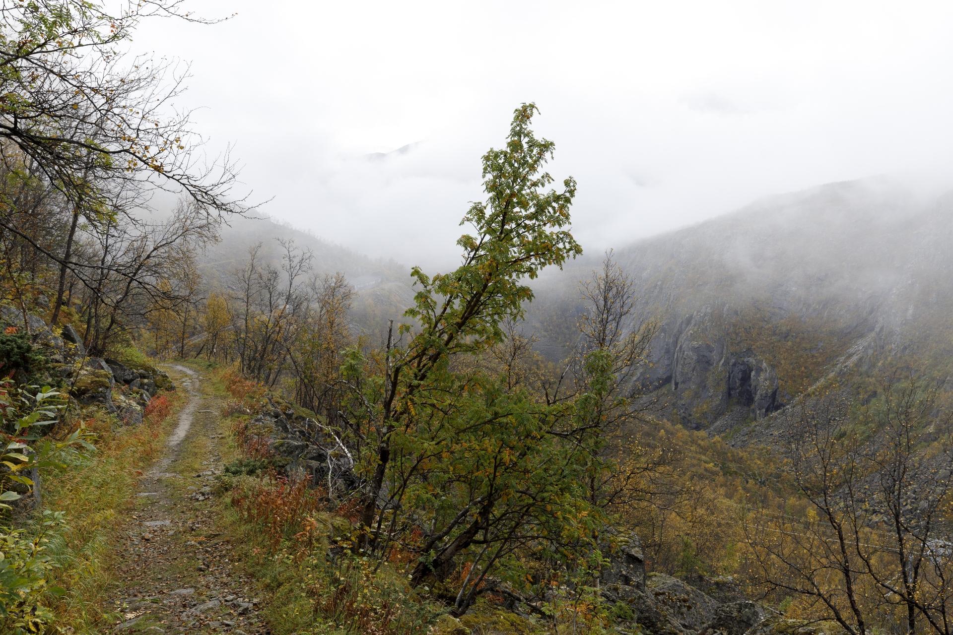 Rallarveien (Blick zurück)